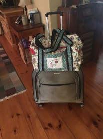 carry on bag 4.jpg