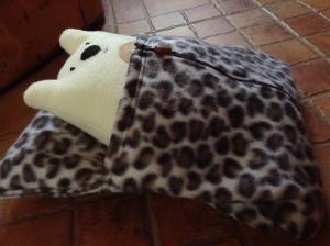 bear in bag 1