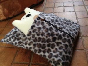 bear in bag 2