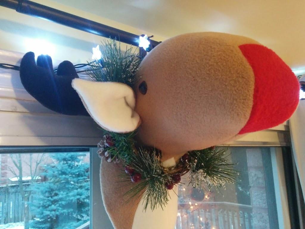 Christmas Reindeer Rudolf.jpg