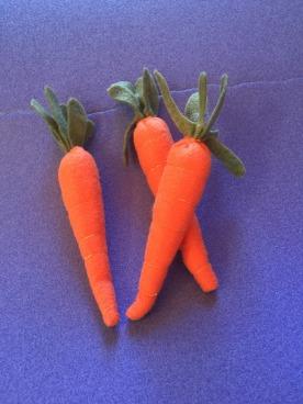 garden-carrots